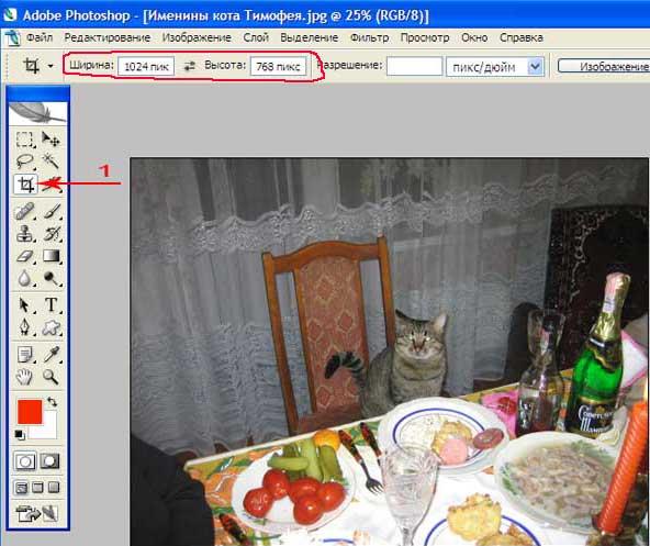 Adobe Photoshop Кадрирование фотографии